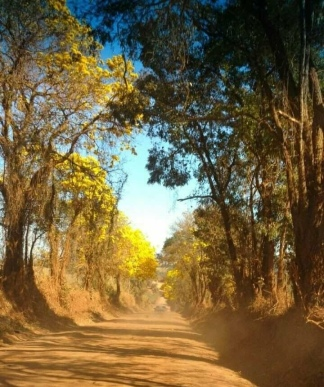 Estrada para o Assentamento Canaã, Brazlândia (DF) – José Carlos Aguilera